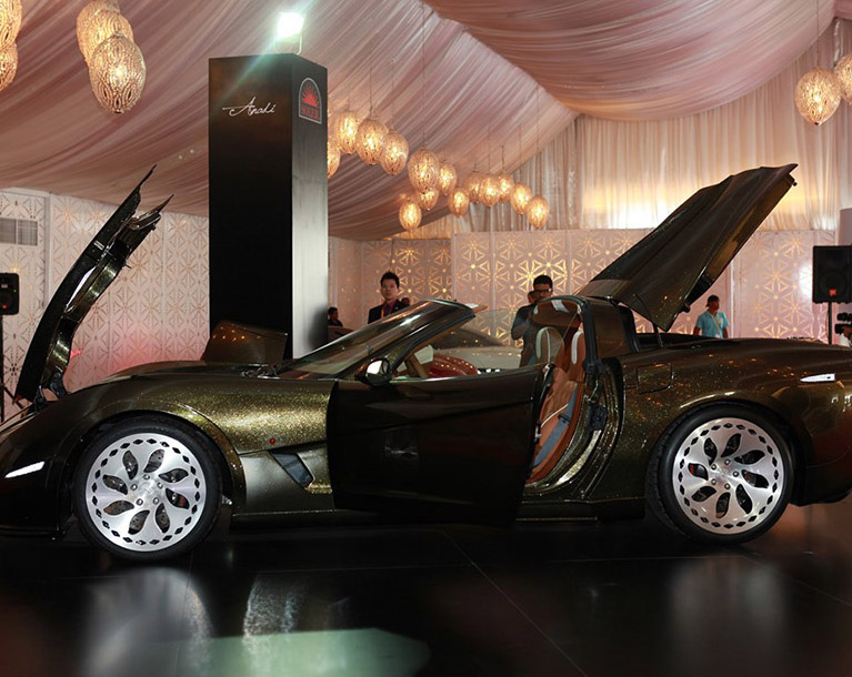 Drive-category car expo